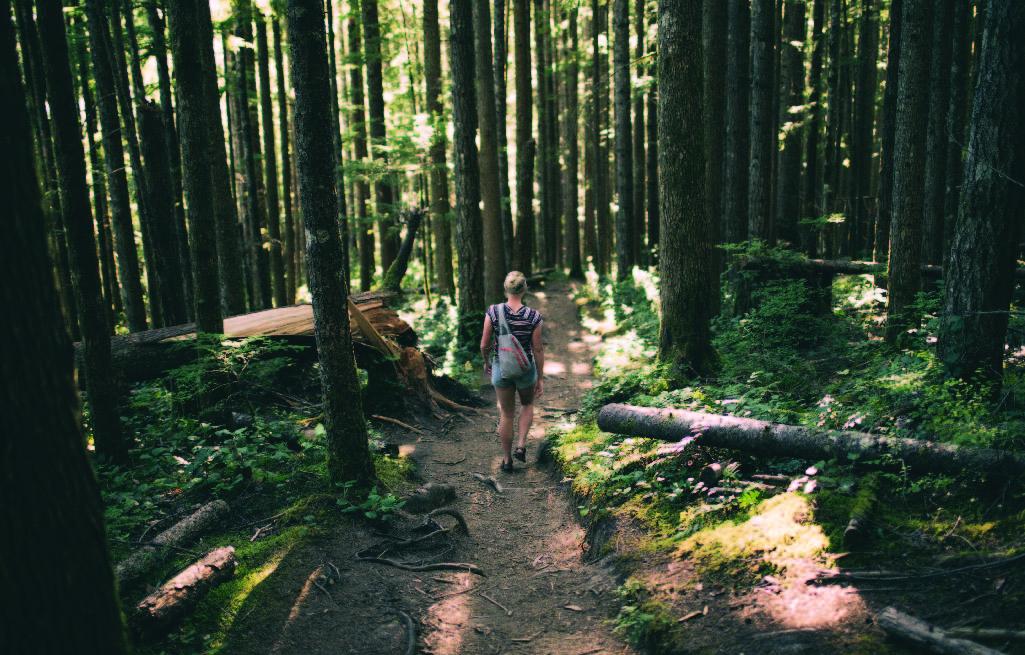 Oakville Hiking Trails
